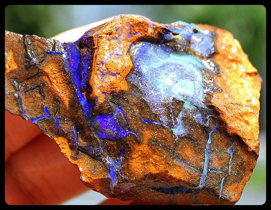 Opal Australien